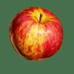 Sweet Sixteen Apple sweet, juicy and crisp.