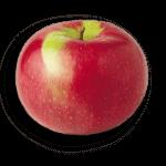 McIntosh Apple - Applewood Farm
